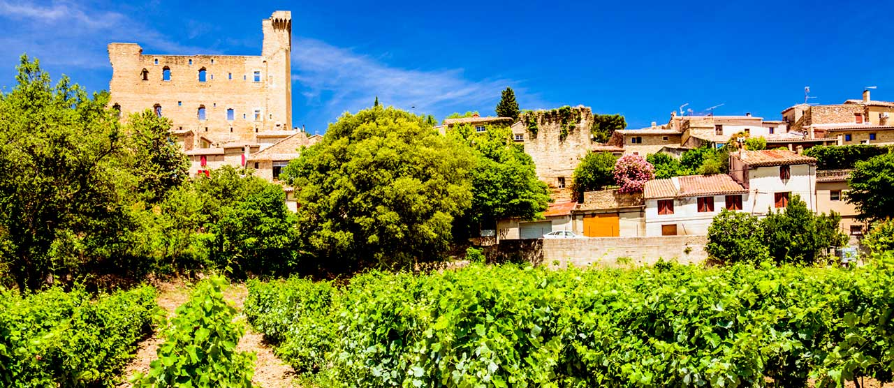 provence-wine-tour
