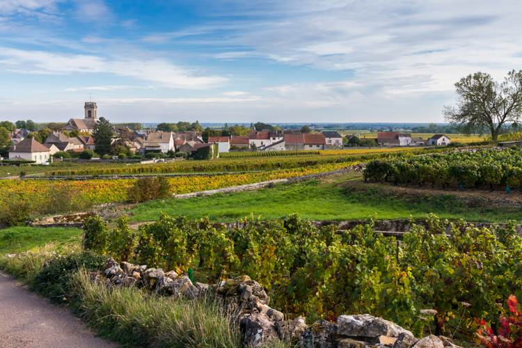 burgundy-private-tour